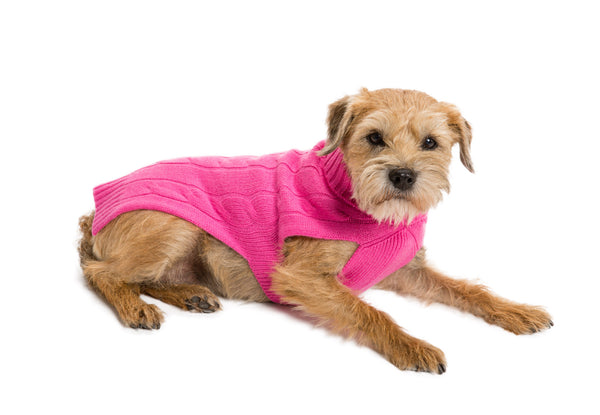 Cashmere Dog Sweater - Hot Pink & Purple