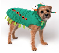 Halloween Costume - Caterpillar Costume - Dog Costume