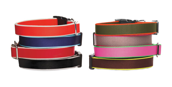 Nylon Collar - Eco Friendly, Colorful Dog Collar, 6 Colors