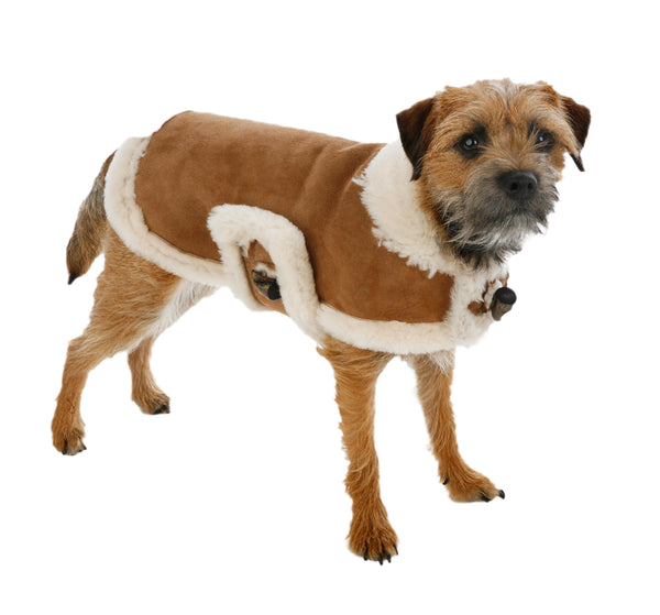 Genuine Natural Shearling Dog Coat