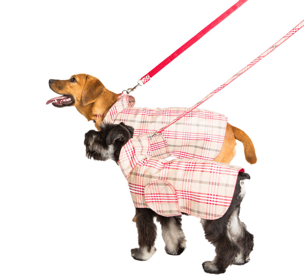 Dog Coat - Raincoat, Waxed Signature Red Plaid