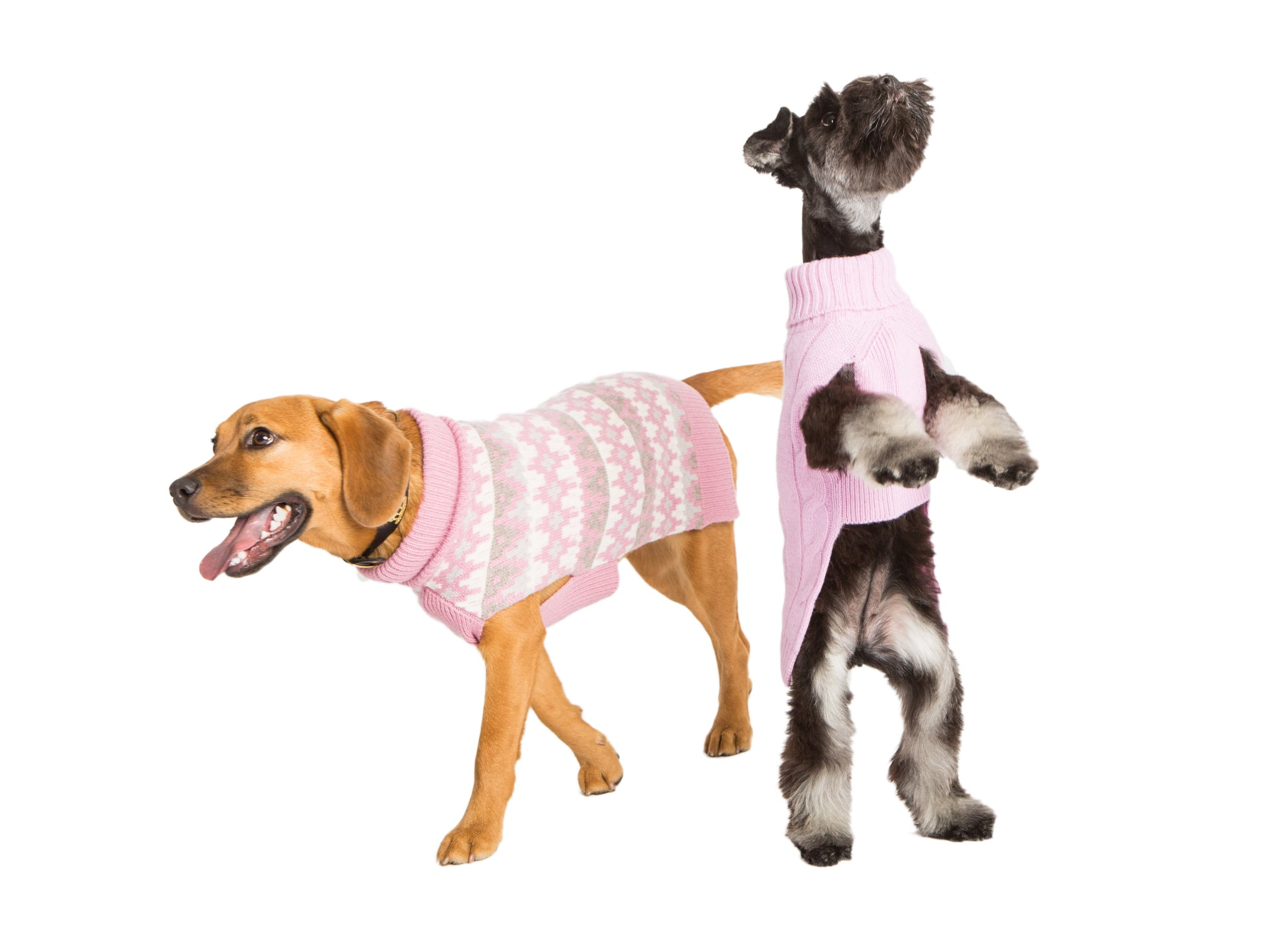 Cashmere Dog Sweater - Geometric Pink 16""