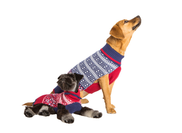 Wool Dog Sweater - Whistler Fair Isle - Blue Sweater & Red Sweater