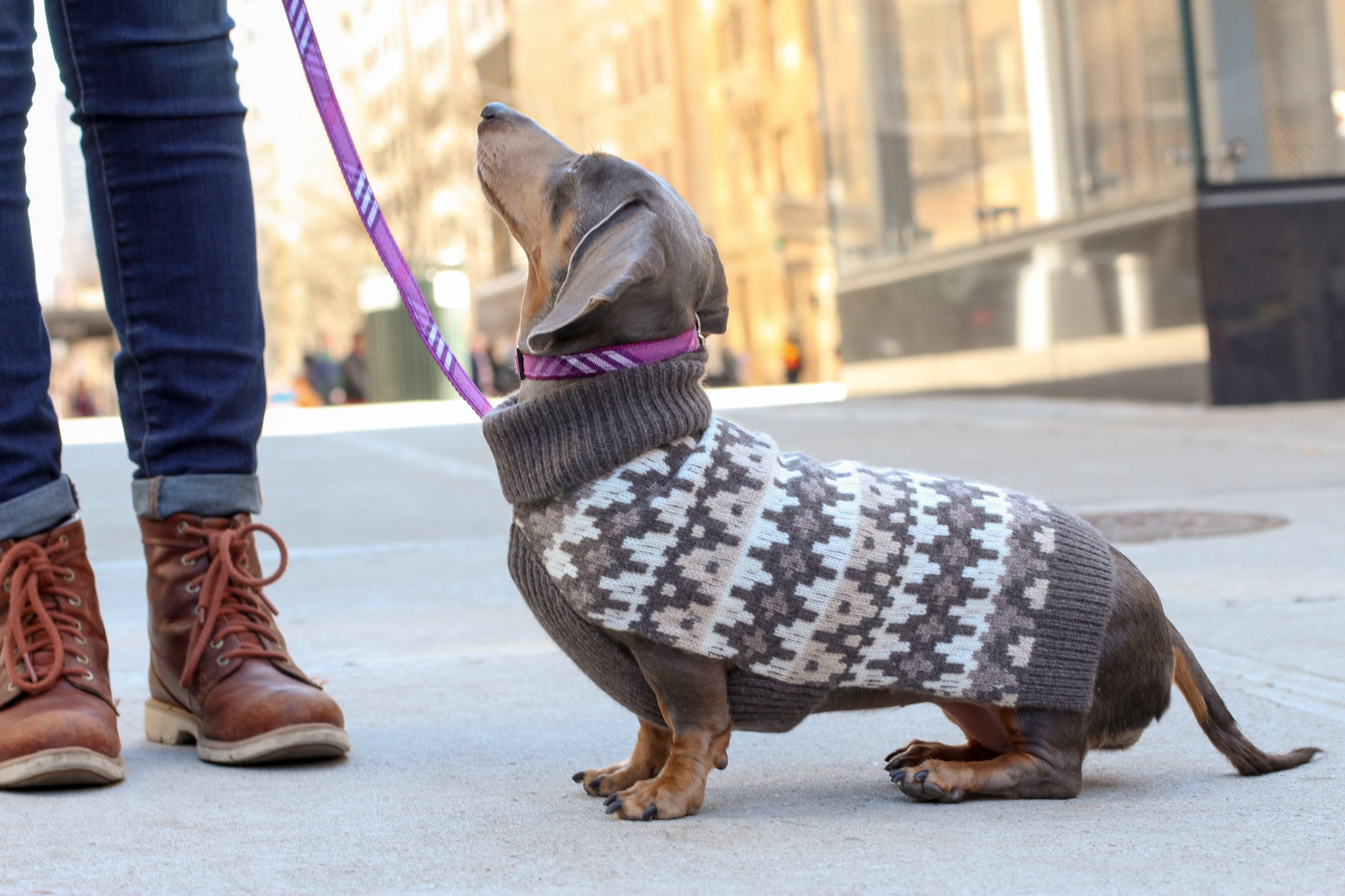 Cashmere Dog Sweater - Geometric Grey