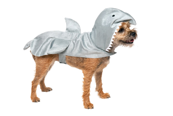 Halloween Costume Great White Shark
