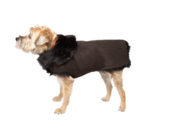 Hand-Cut Shearling Long Fur Dog Coat - Brown