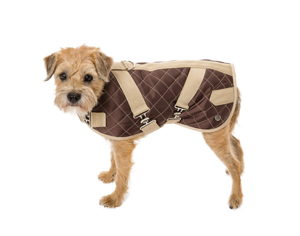 Horse Blanket | Navy or Brown Quilted | Dog Coat