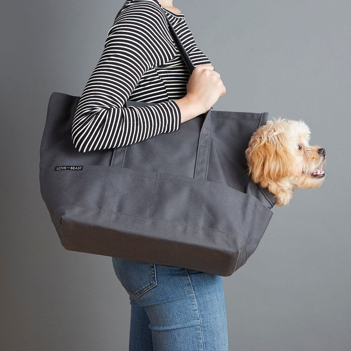 Dog Carrier - Sadie Canvas Tote Grey