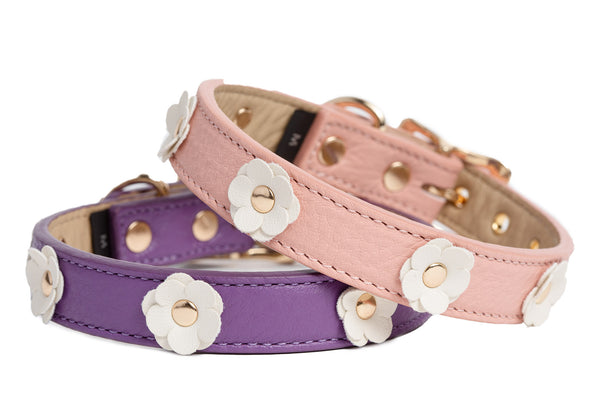 Dog Collar - Fine Flower Leather Dog Collar - Soft Leather - Pink or Purple