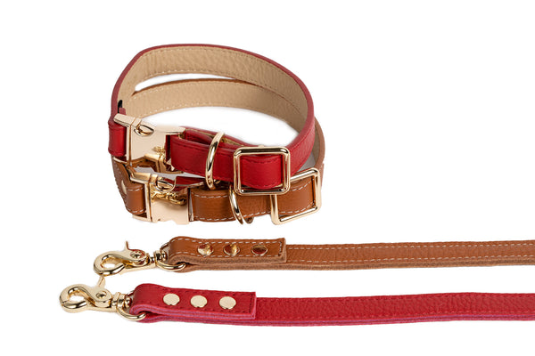 Dog Collar - Leads -  Fine Leather Buckle - 2 Color Options