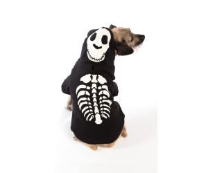 Halloween Costume - Skeleton Costume - Dog Costume