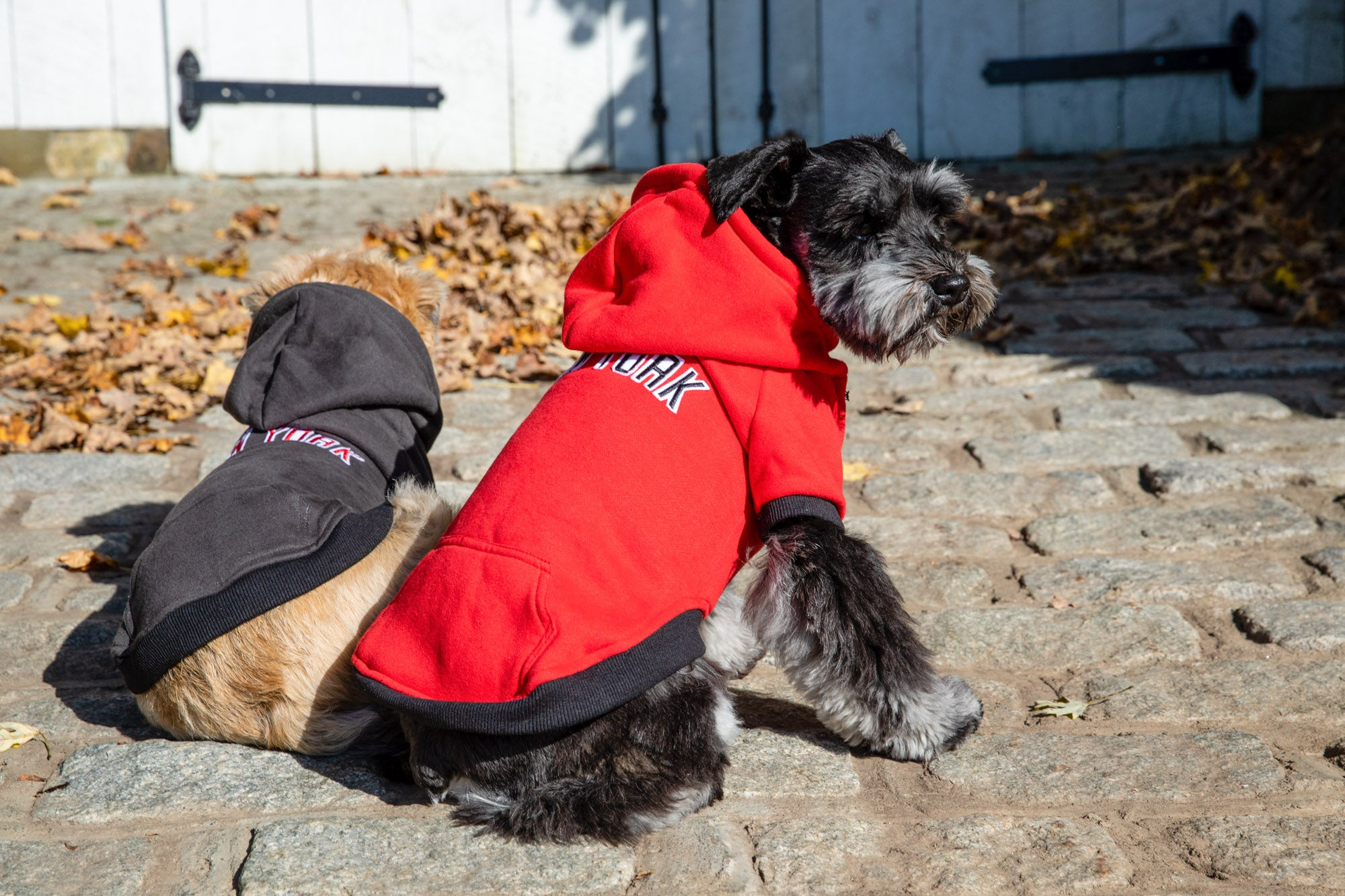 Sweatshirt Hoodie - NYC Dog Hoodie - Dog Sweatshirt - 4 Color Options