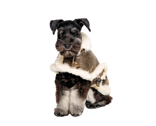 Genuine Distressed Shearling Dog Coat