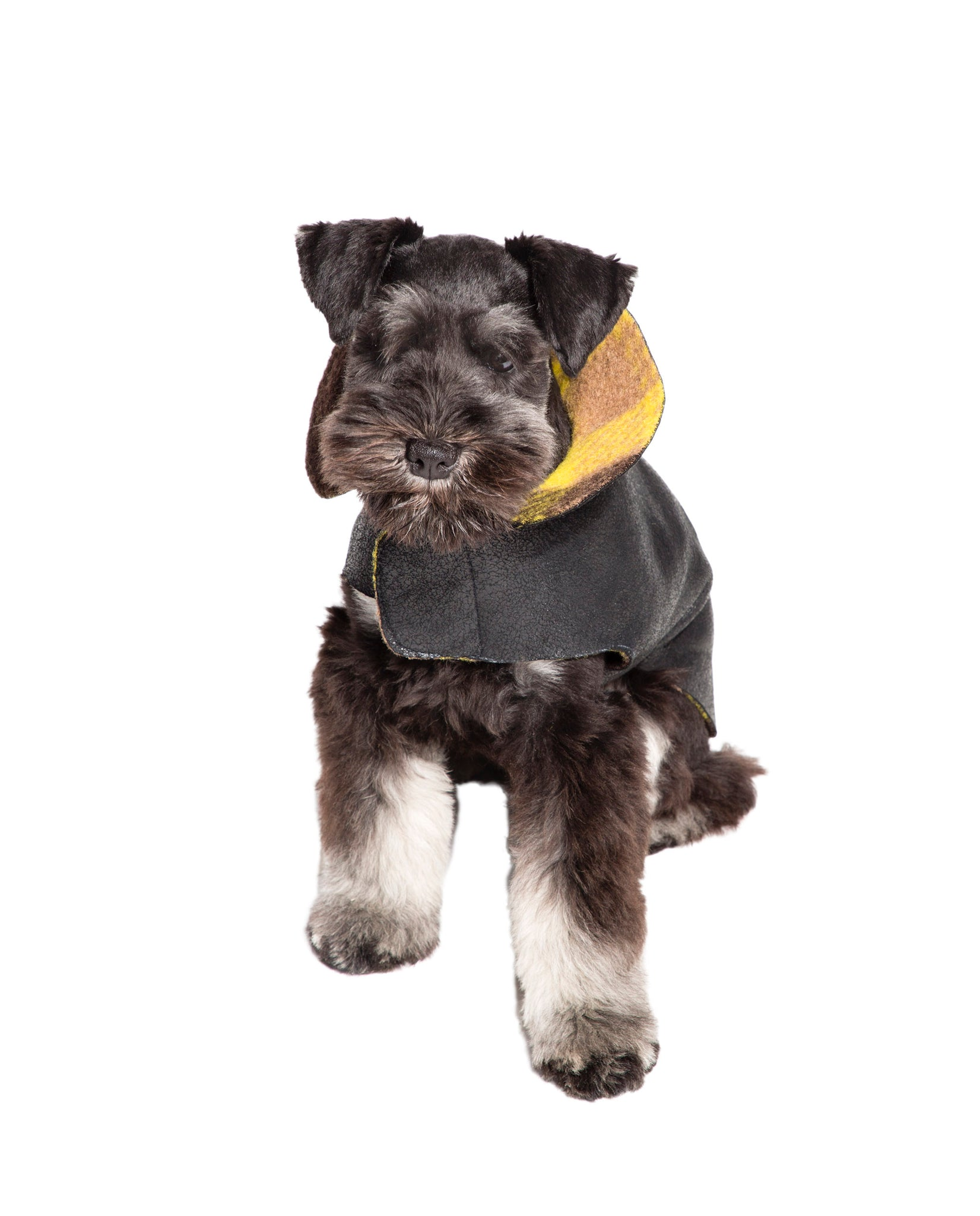 Black Leather w/Yellow Plaid Shearling Dog Coat