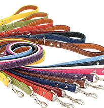 Auburn Lead - Dog Lead - Soft Leather - 10 Color Options
