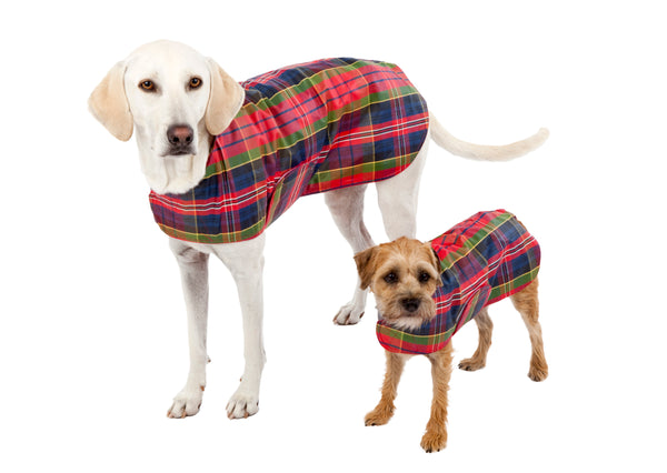 Dog Coat - Raincoat, Waxed Red Tartan