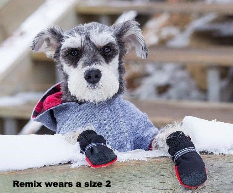 Boots by Poochie - Dog Boot - Protection for Winter & Summer