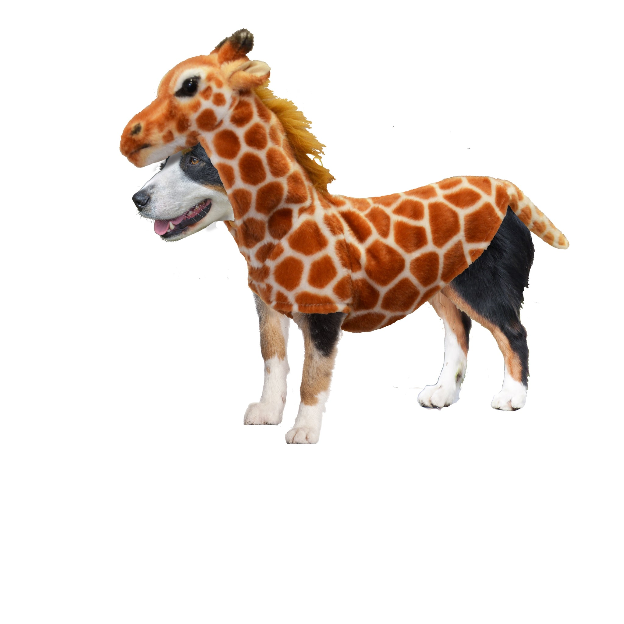 dog halloween costumes safari giraffe costume