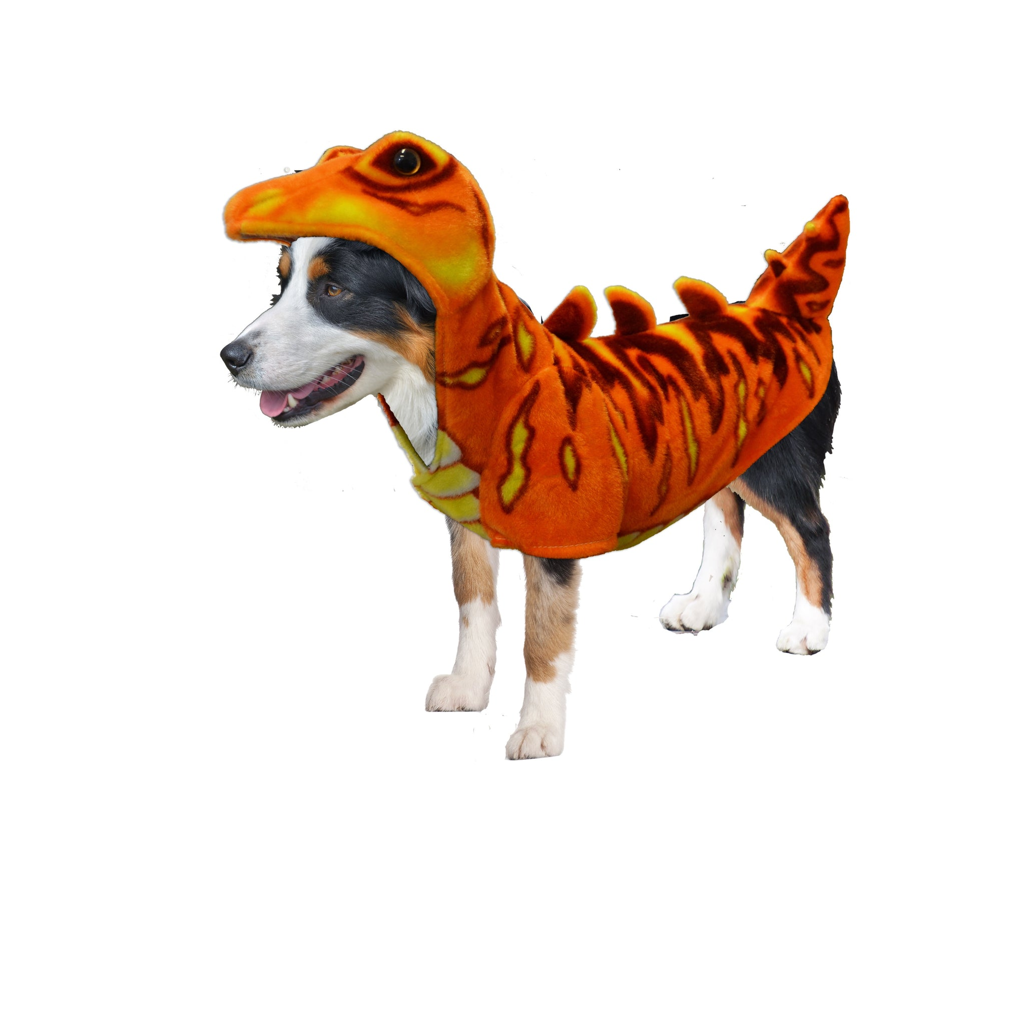 Dog Halloween Costumes | Orange Stegosaurus Dinosaur Costume