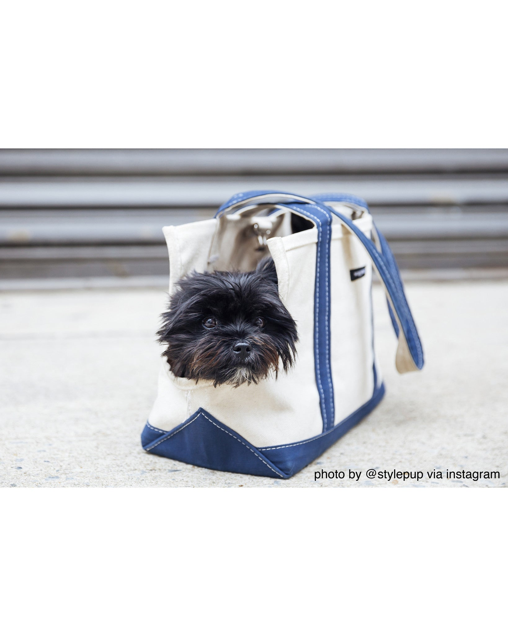 Wagwear | Summer Carrier | White Canvas Tote | Dog Carrier | 6 Color Options