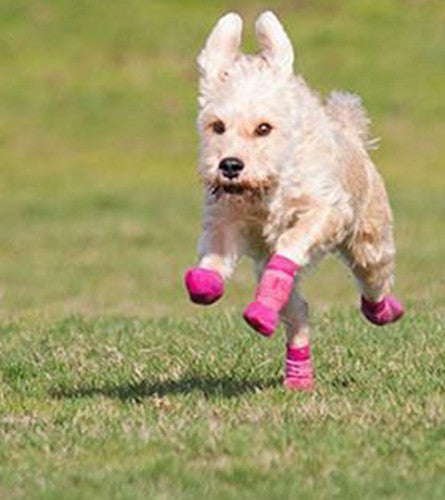 Anti-slip - Sport Boot - Dog Boot - Pink