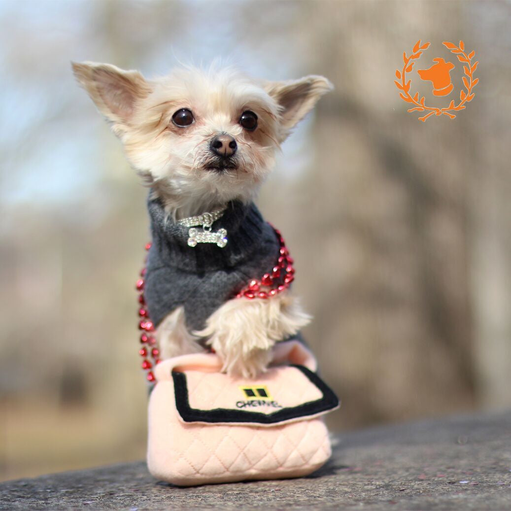 Chewnel Purse - Dog Toy