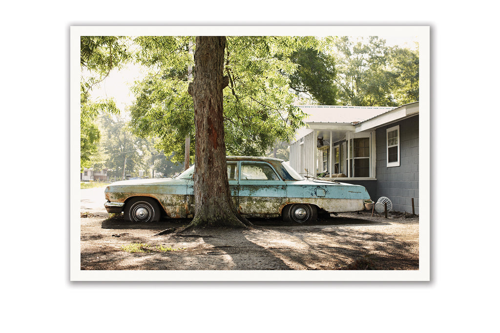 "Some Where Else Postcard ""Front Yard, Picayune, Mississippi"""