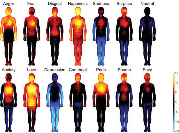 HOW POSITIVE EMOTIONS  REDUCE INFLAMMATION