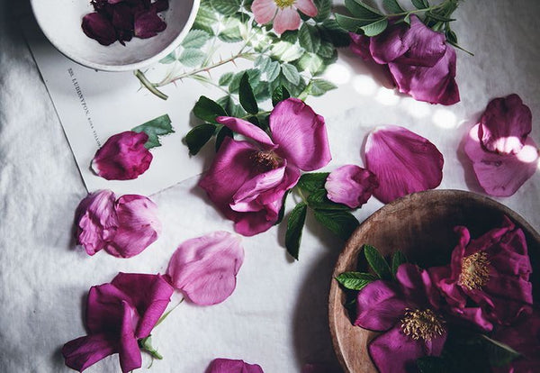 THE HEALING POWERS OF ROSE