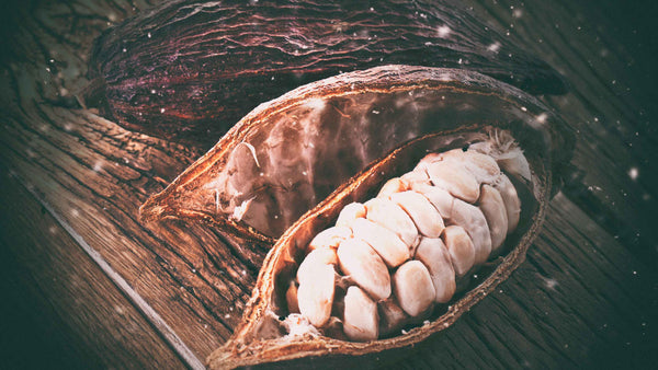 Can cacao actually help you sleep better?