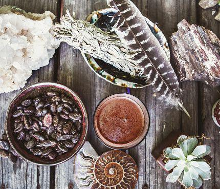 UNLOCKING MUSHROOMS with Cacao : adaptogenic treats to elevate your body & soul