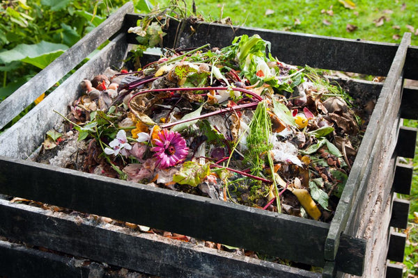 7 Tips to Start Composting