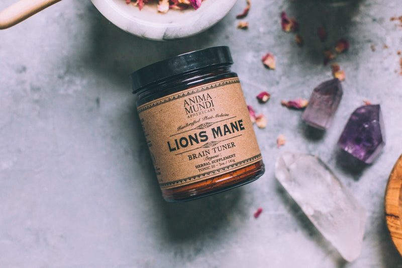 LIONS MANE : Brain Booster - NEW!