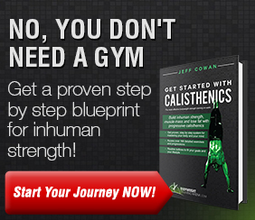 The Ultimate Guide To Calisthenics [$27]