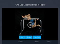PARTNER BUNDLE: LIFETIME ACCESS TO Calisthenics Academy / Buy 1 Get 1 HALF price