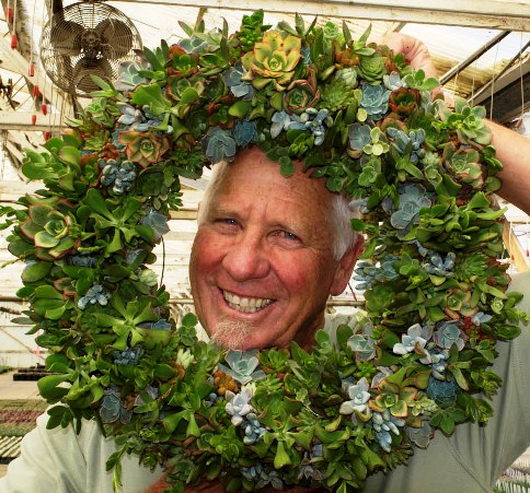 Robin with Wreath