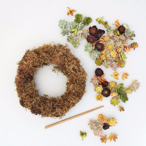 Succulent Wreath Kit - DIY Succulent Wreath | $109.00 | Succulent Gardens