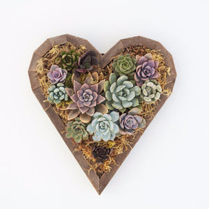 Planted Medium Redwood Heart Planter