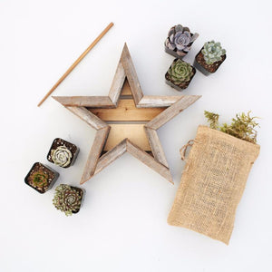 Small Succulent Star Planter Kit - DIY Succulents | $49.00 | Succulent Gardens