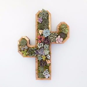 Succulent Vertical Planter - Redwood Cactus