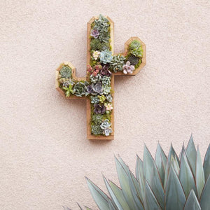 Succulent Wall Planter - Redwood Cactus Planter - Vertical Succulent Planter