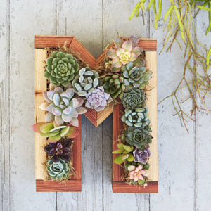 Redwood Small Letter Planter
