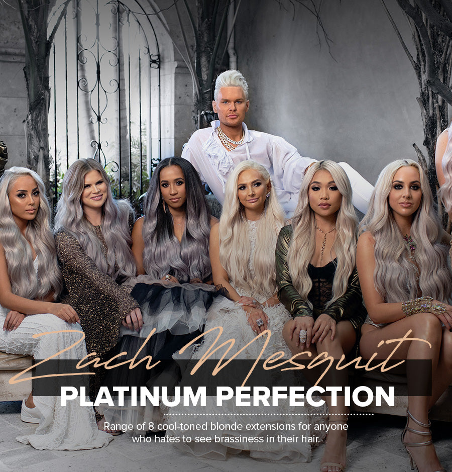 Platinum Perfection by Zach Mesquit Hair Extensions