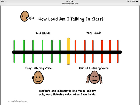 """How loud am I talking?"" Visual"