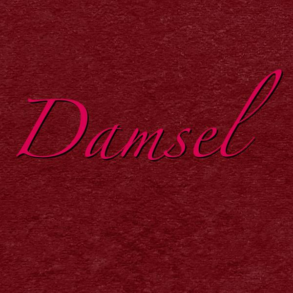 Damsel - Waterproof Suedecloth NINJA Pad or Liner