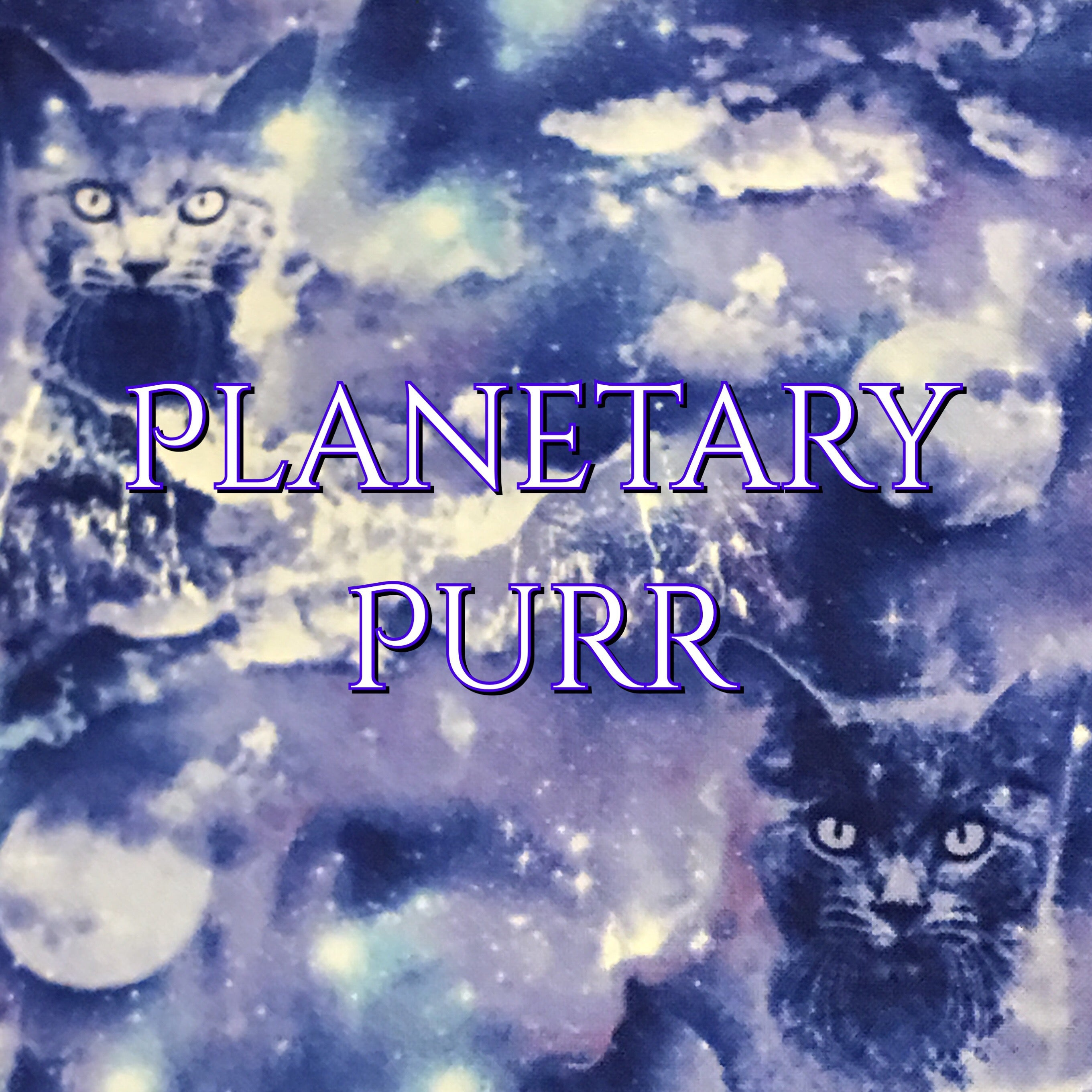 Planetary Purr - Quilter's Cotton
