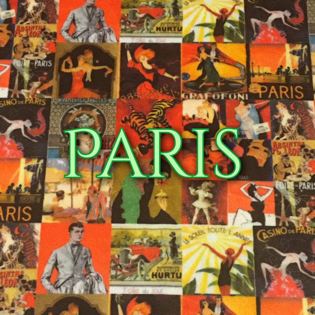 Custom Order - Specialty Minky Print - Paris