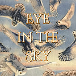 Eye in the Sky - Quilter's Cotton
