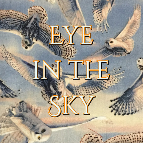 Custom Order - Eye in the Sky - Quilter's Cotton
