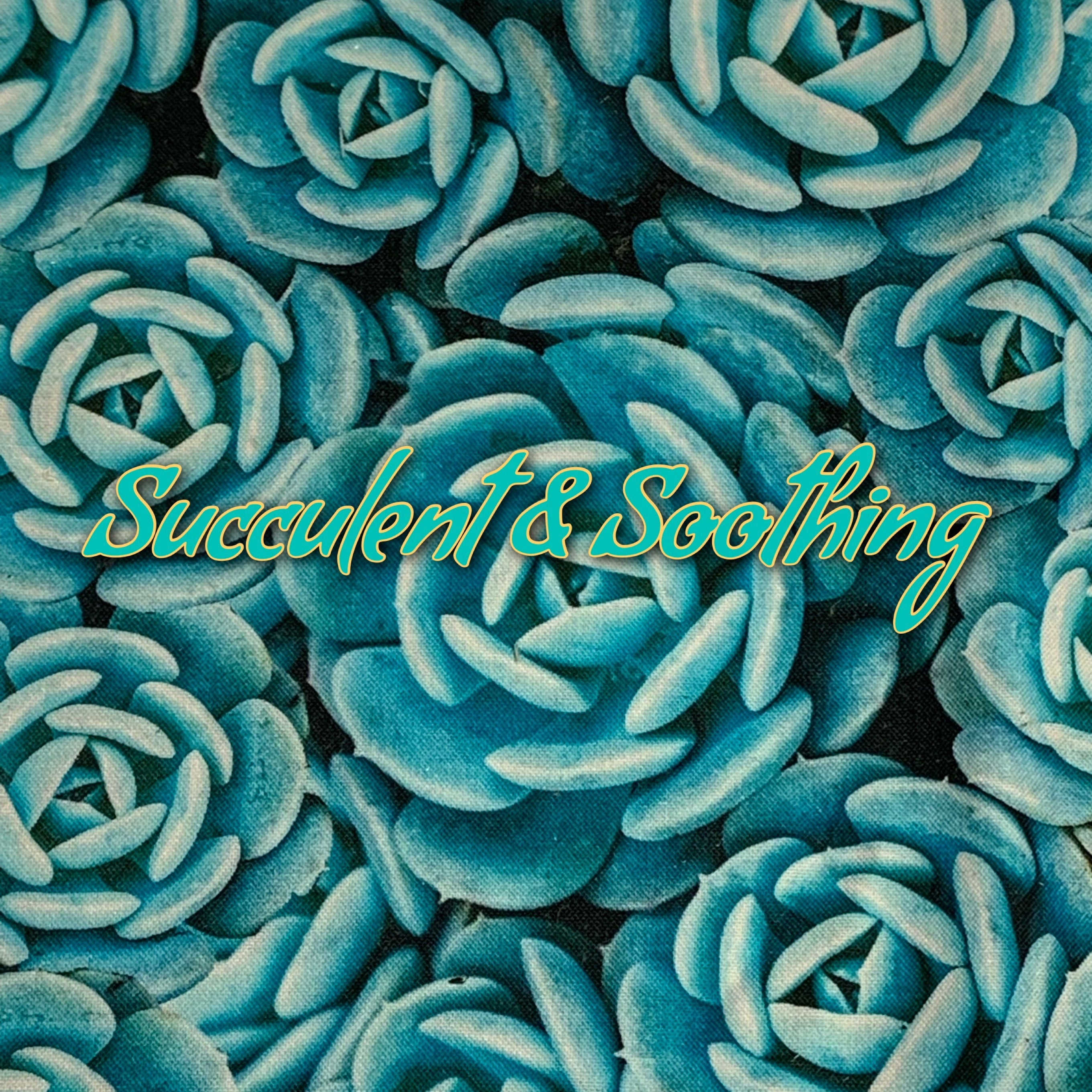 Succulent & Soothing - Quilter's Cotton